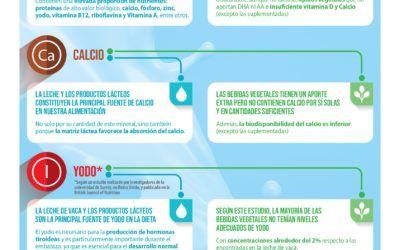 Principales diferencias entre la leche y las bebidas vegetales