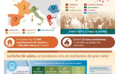 El sector caprino en España