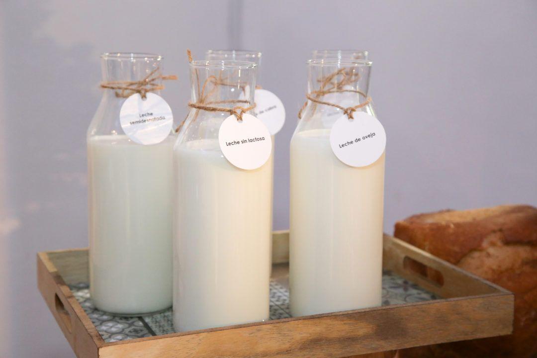 Los encuentros saludables: Los lácteos en la alimentación actual, mitos y realidades
